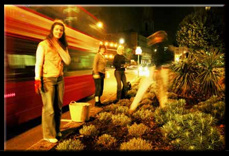 Guerilla Gardening at Night