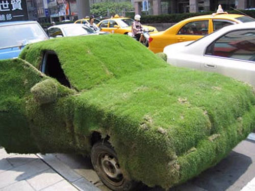Grass Covered Car Camouflage