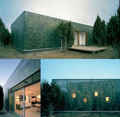 7 Amazing Houses Built Into Nature: The Ultimate Urban Camouflage Collection: 10 Strange