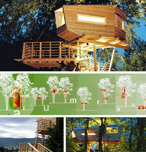 10 amazing tree houses plans pictures designs ideas for Modern tree house designs