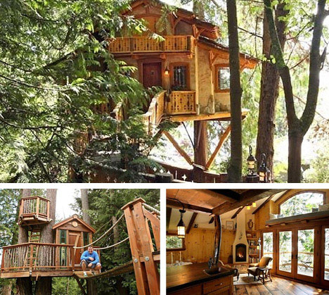 Seattle-designed treehouse, from Web Urbanist