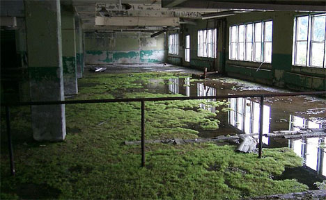 Alaska Abandoned Building Interior