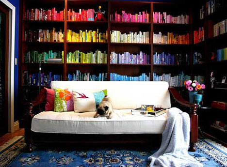 Color Coded Bookshelves