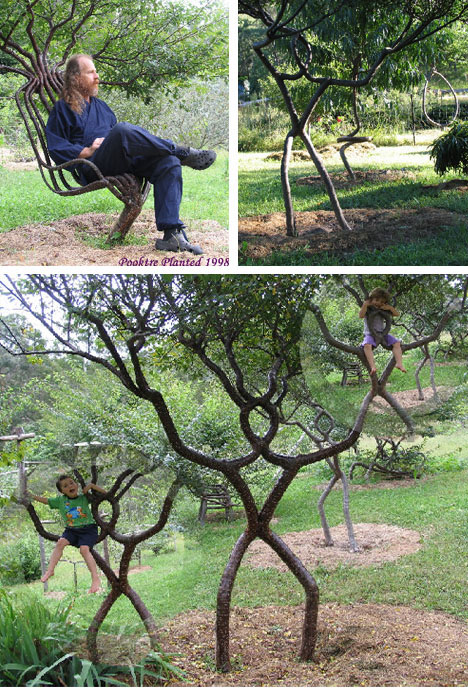 Arbosculpture to Overgrowth: 25 Seriously Twisted Trees ...