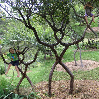 Arbosculpture To Overgrowth 25 Seriously Twisted Trees