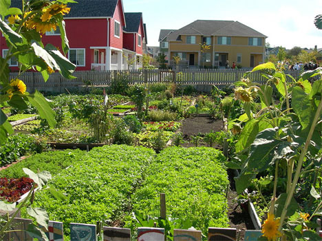 Unusual Urban Planting: 5 Different Types of Gardening | Urbanist