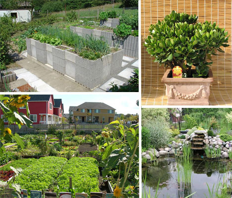 unusual urban planting 5 different types of gardening
