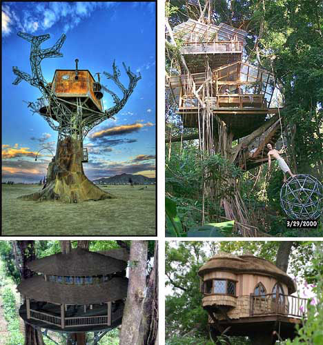 Look up 15 more amazing tree houses from around the for Best houses in the world pictures