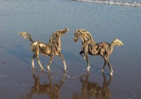 Two Driftwood Horses on the Beach