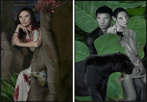 artistic photographers daniel lee