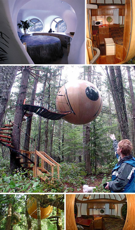 Sustainable Forest Tree House Design