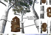 Tree Hugging House Design