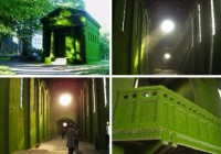 Architectural Grown Green Art