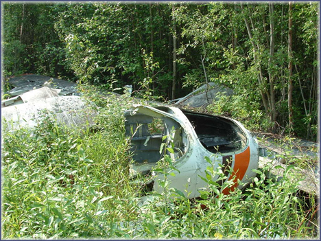 abandoned arctic plane wrecks