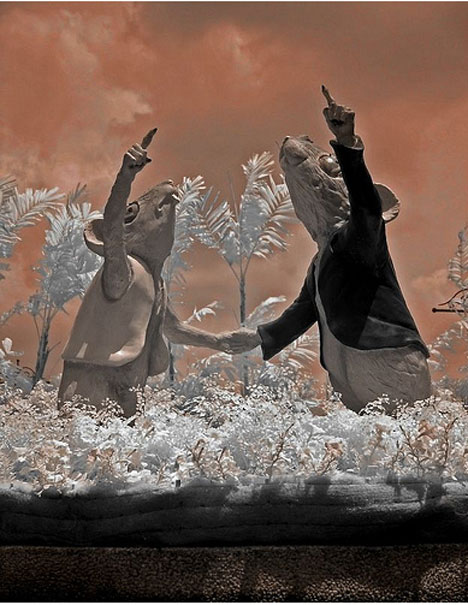 dannie tjahjono infrared photographs