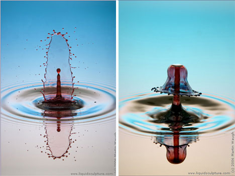 martin waugh high speed photography