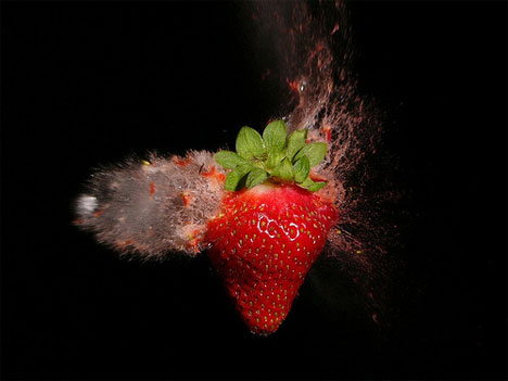 stefan high speed photography strawberry