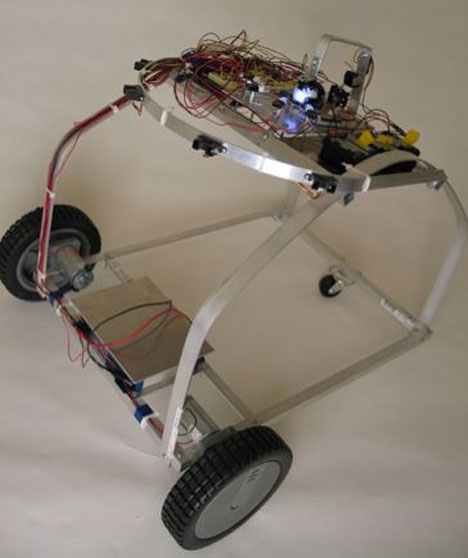 cockroach controlled robot