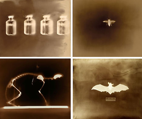 keith carter photograms