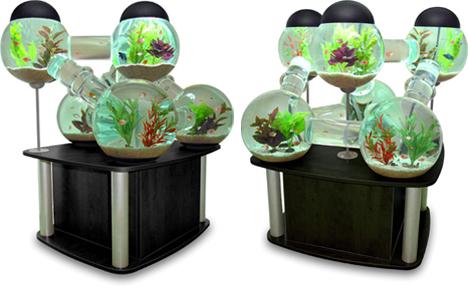 Octopus Studios Modular Fish Tank