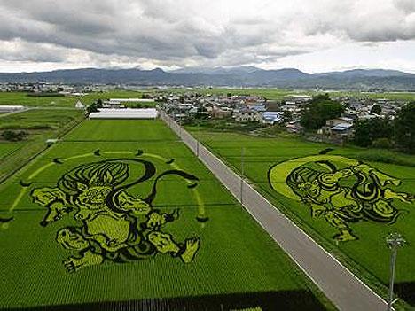 japanese-field-art-1