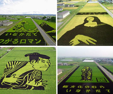 japanese-field-art-2