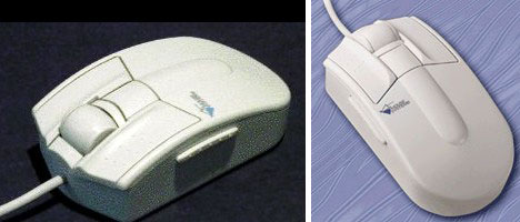 mouse_7