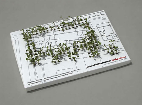 sprouting-garden-business-card