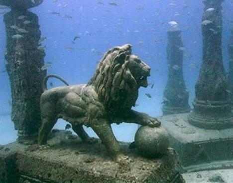 underwater lion