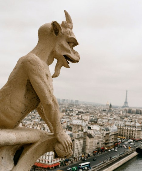 Gargoyles From Gothic Garglers To Grotesque Guardians