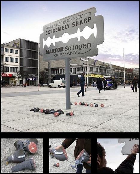 pigeons vs razors