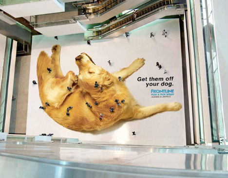 http://img.weburbanist.com/wp-content/uploads/2010/11/bizarre-ads-get-them-off-your-dog.jpg