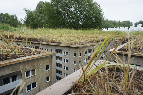 Rural Underground: City Pops Up Beneath a German Field