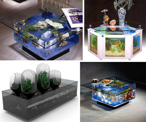 Holy Water! 24 Amazing Aquariums and Fish Tanks