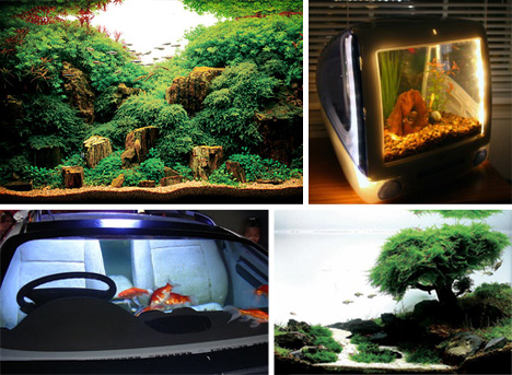 Holy Water 24 Amazing Aquariums And Clever Fish Tanks Urbanist