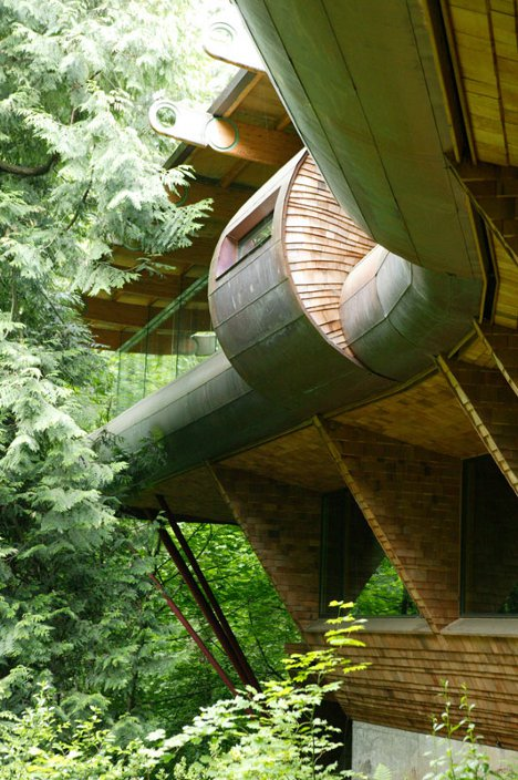 If Wright's Falling Water Were a Tree House …