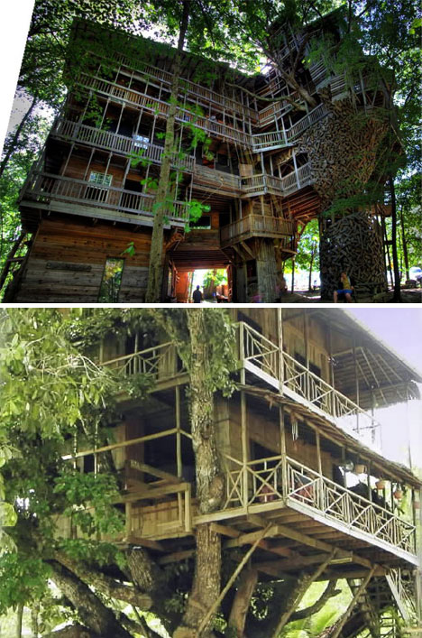 sky high but grounded incredible tree houses