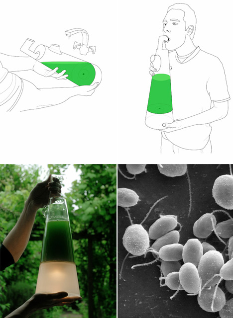 3 Eerie Eco-Friendly Lamps Fueled by Algae, Breath & Blood | Urbanist