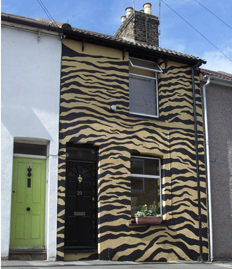 Tiger Stripes To Cow Spots 13 Playful Home Paint Jobs