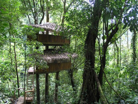 Rain forest retreat remote jungle tree house hotel urbanist for Tree house for sale costa rica