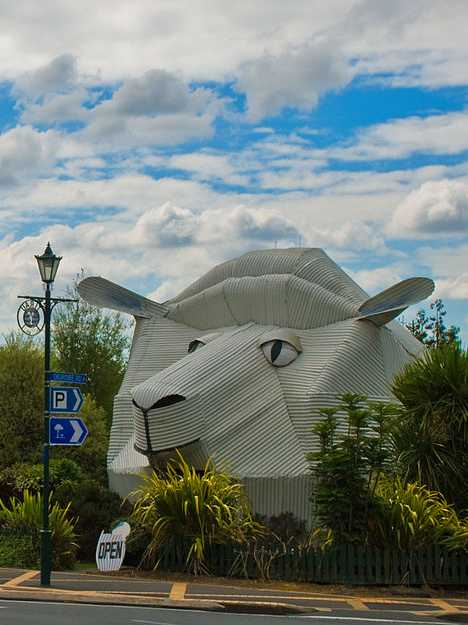 Sheep Building Tirau Waikato New Zealand