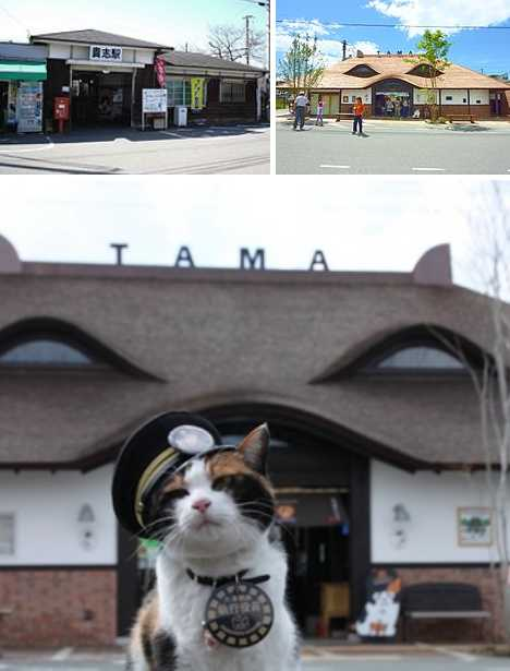 Tama Cat Kishi Station