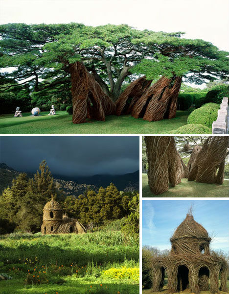 Treehouses Dougherty 1