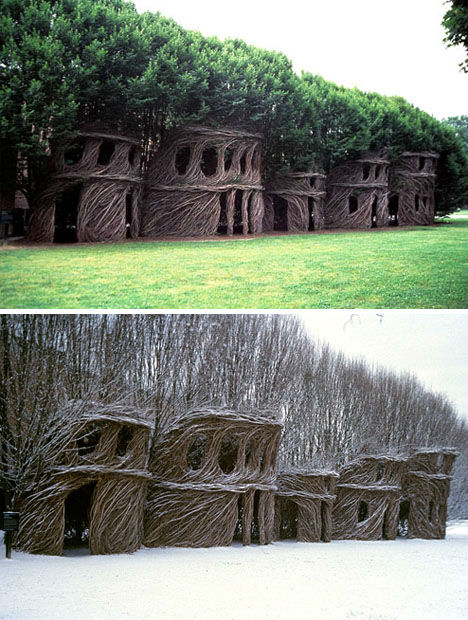 Treehouses Dougherty 2