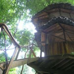 Fairytale Retreats: 15 Magical BlueForest Tree Houses