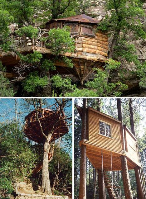 Treehouses Romero 2