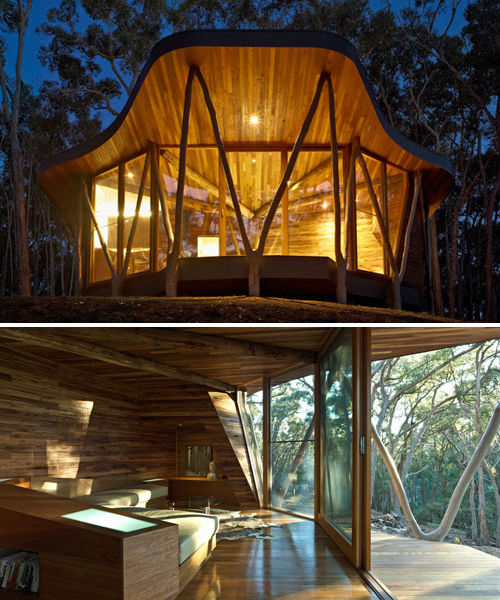Treehouses Trunk House