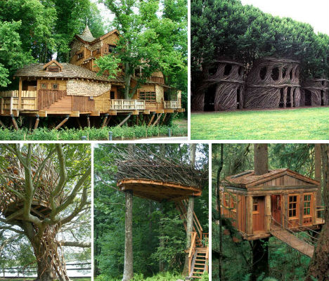Treehouses main