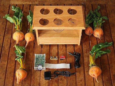 beet box