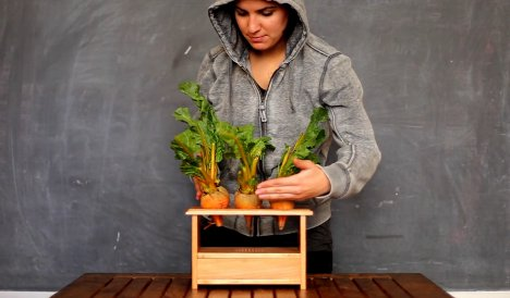 beetbox musical vegetables
